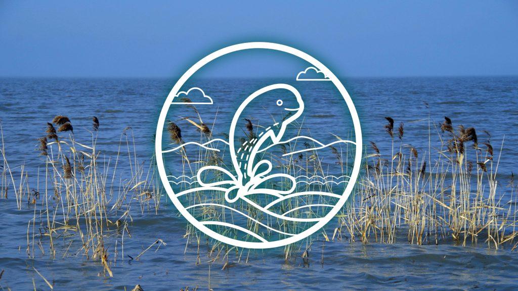 Aquatic ecology and environment