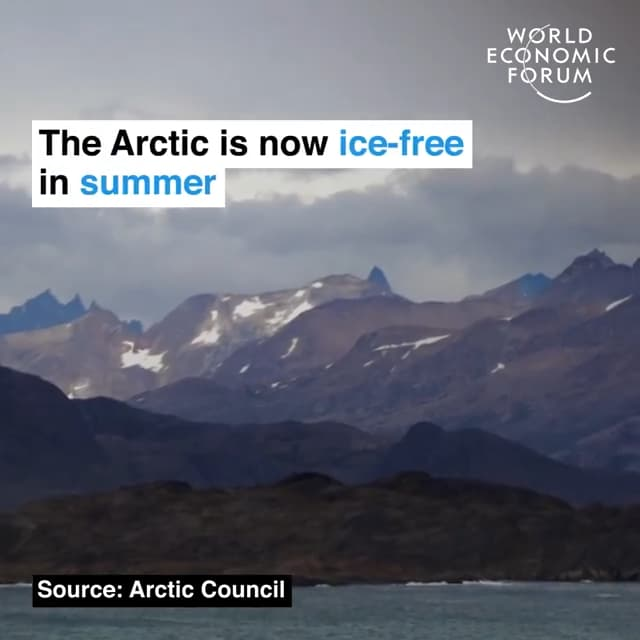 夏季的北极已经看不到冰雪