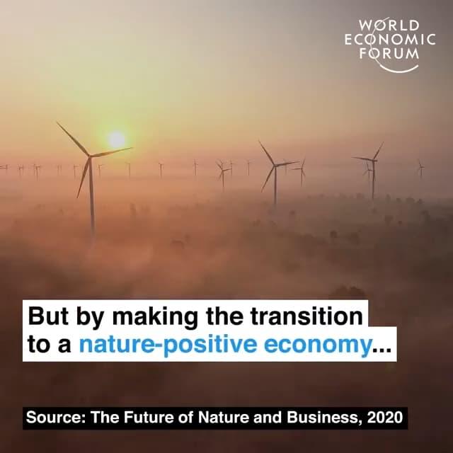 通过向自然正向型经济的转型…