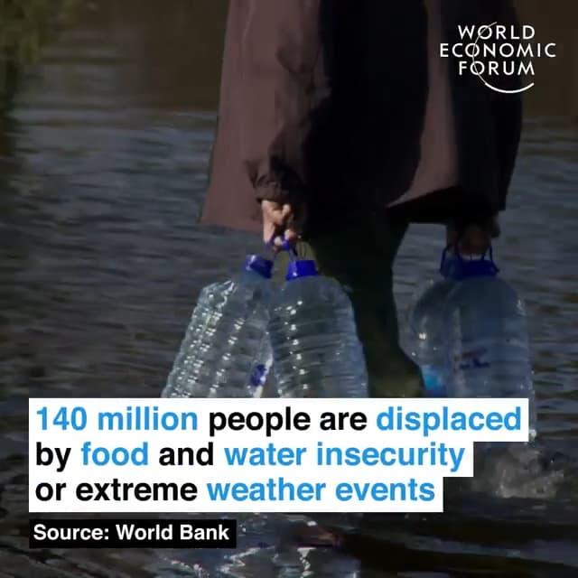因为粮食、用水安全问题或者极端天气,1.4亿人口被迫转移