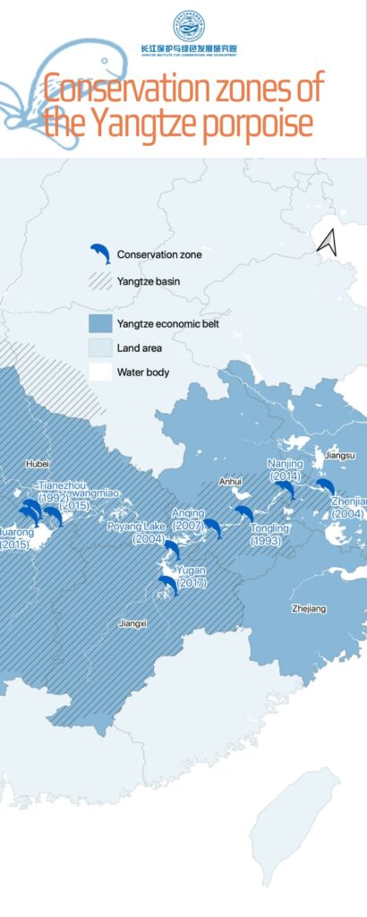 Conservation zones the Yangtze porpoise