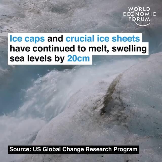 冰原以及重要冰盖将继续融化,将海平面推高20cm