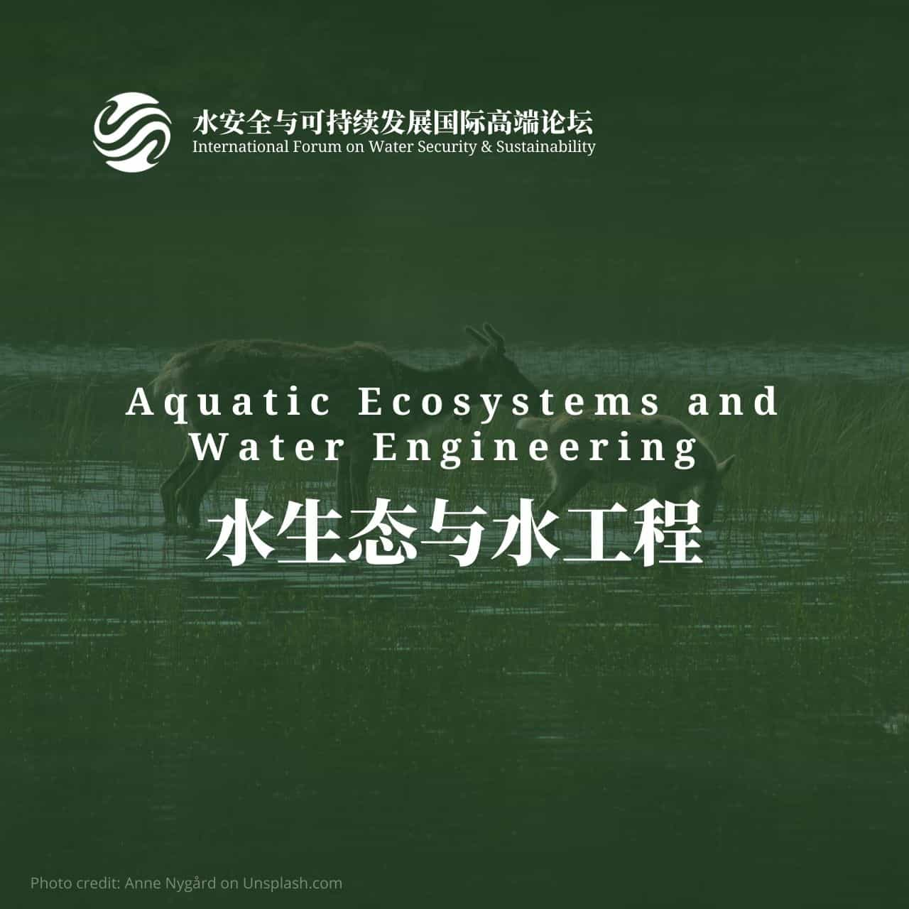 Aquatic ecosystems and water engineering
